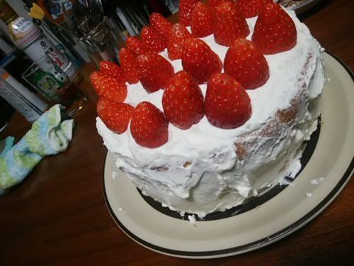 母作ケーキ